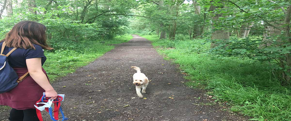 G walking in the woods